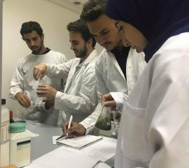 Research at the Department of Pharmacognosy