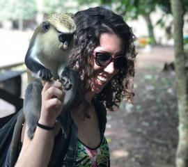 A visit to the Tafi Atome Monkey Sanctuary