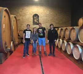 Visit at a winery in Târgu Mureș