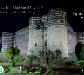 ANGERS - Feeling like discovering the Castle of Angers?