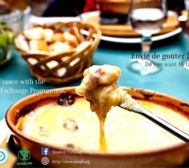 fondue - Do you want to taste Fondue?